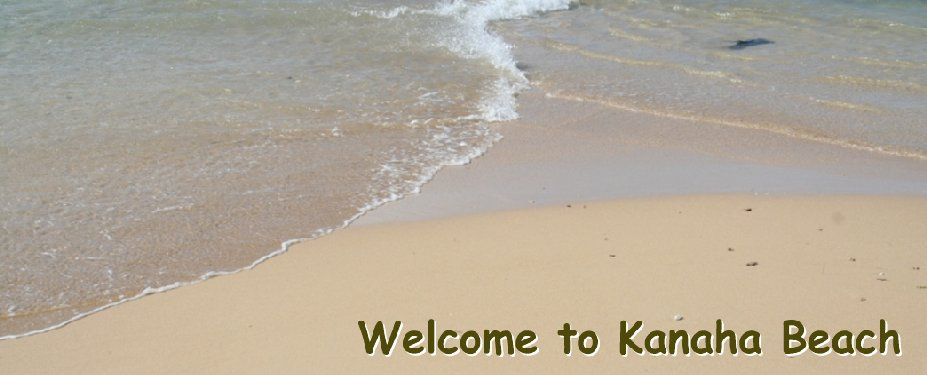 welcome-to-kanaha-beach