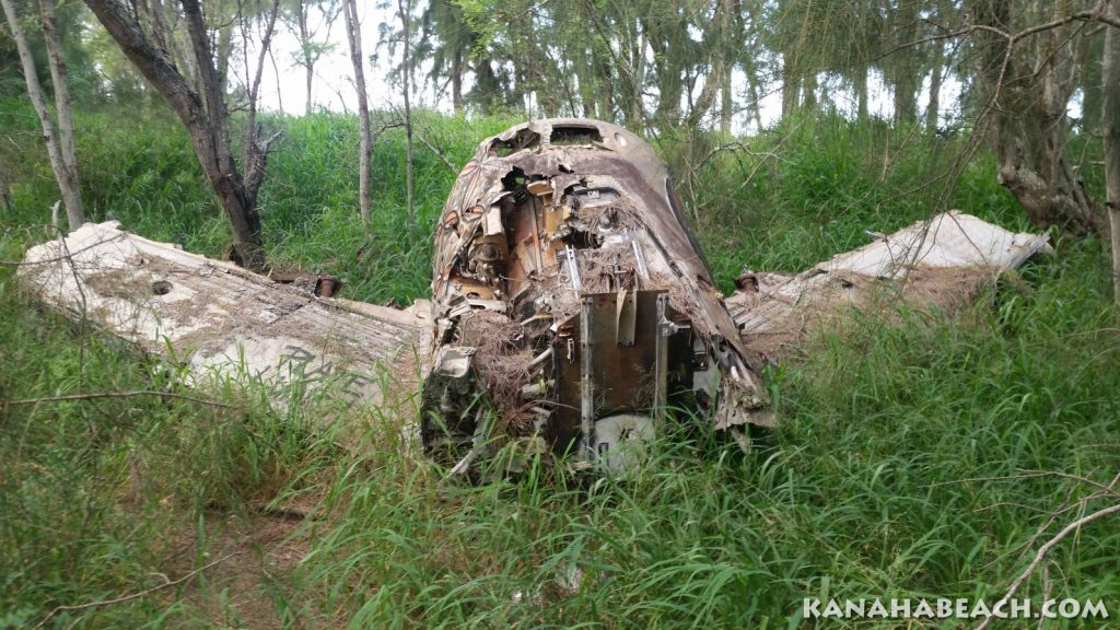 WW2 Fighter Plane Wreck